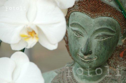 Buddha a orchidea