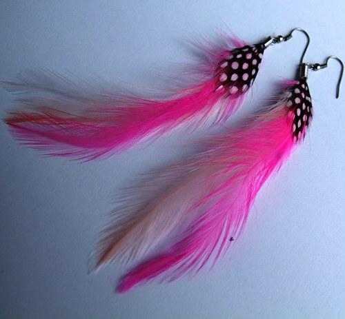 Růžovo-lososová peříčka