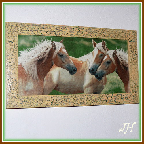 Obrázek koně