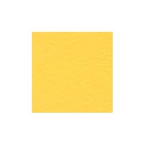 Čtvrtka Intense Yellow