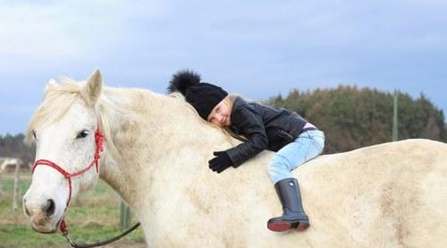 Když se zamiluje kůň...