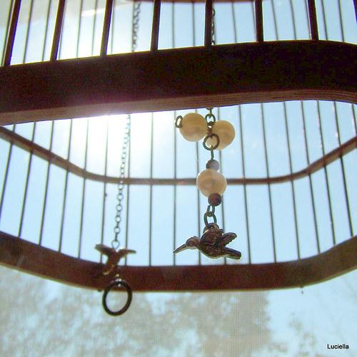 Kolibříčci na perlových vajíčkách IV.