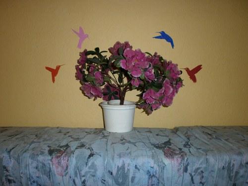 Samolepka - dekorace na zeď - Barevní kolibříci