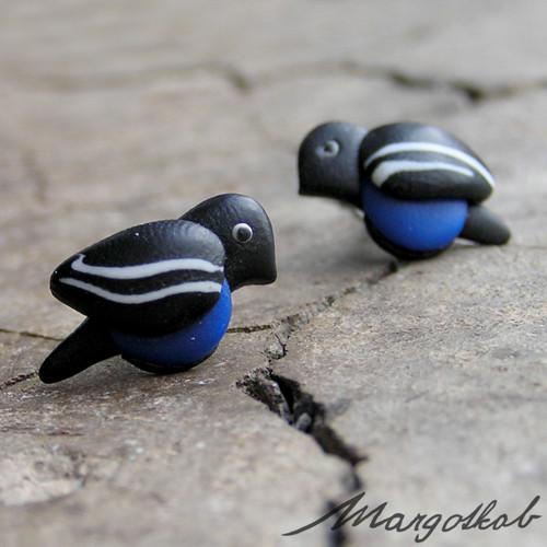 Ptáčci: černo modří - náušnice