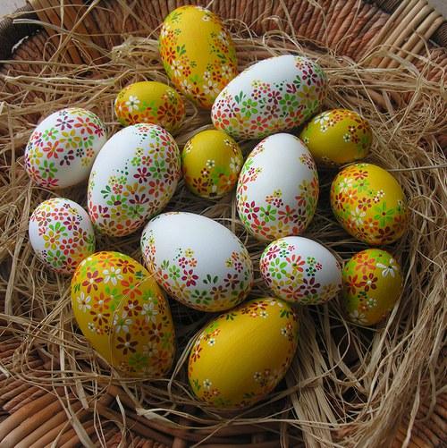 Kachní kraslice žluté a bílé