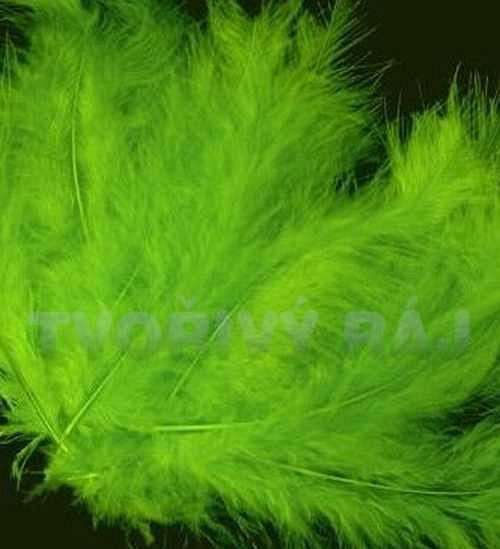 Pštrosí peří délka 12-17cm, zelené