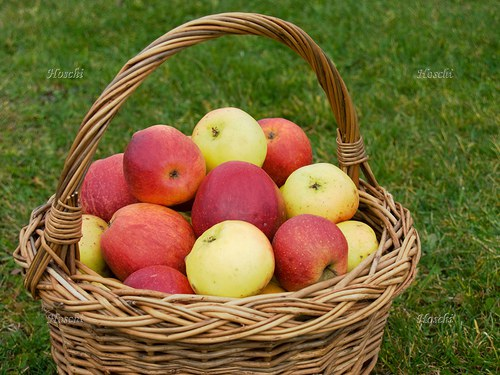 Jablka v košíku