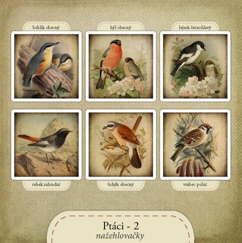 Nažehlovačky - Ptáci 2
