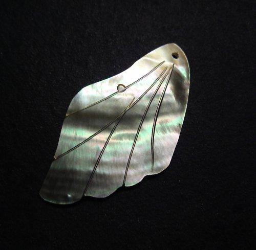 Perleťové křídlo / list