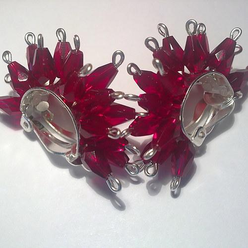 červení ježouři