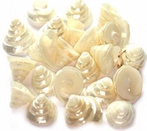 Korálky mušle 60g - spirálky, perleť