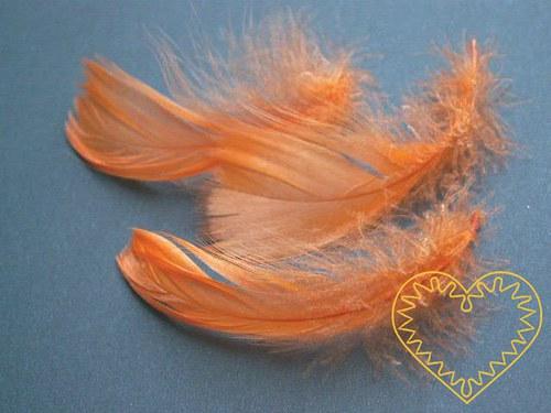 Peříčka oranžová - balení 15 g (přes 200 ks)