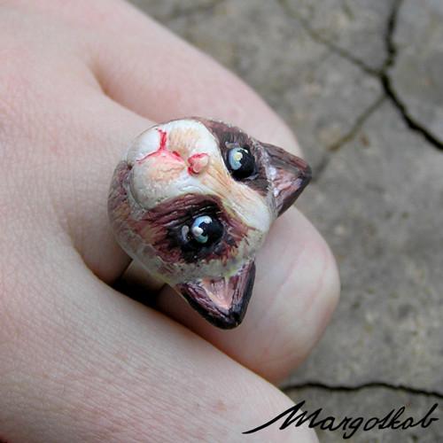 Kočky: prsten nasraná kočička