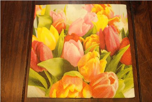 Ubrousek-Krása tulipánů (33cm x 33cm)