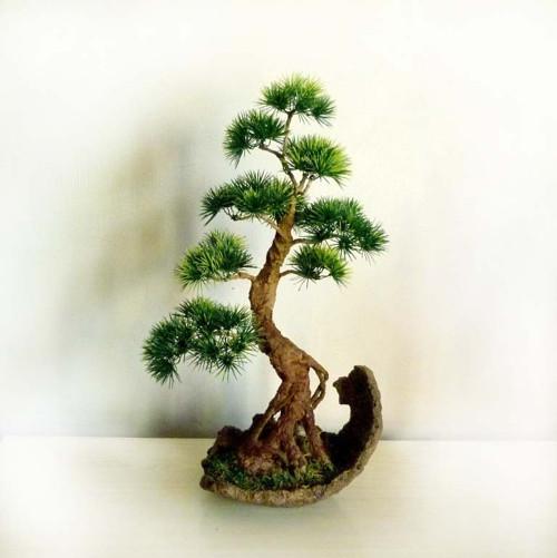 Umělá bonsaj borovice v keramické skořepině