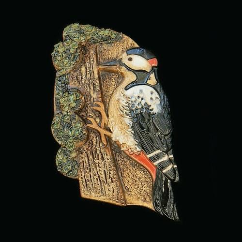 Ptáček strakapoud