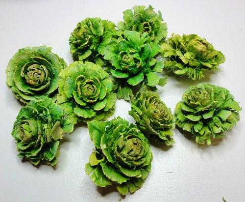 Cedrová růže zelená