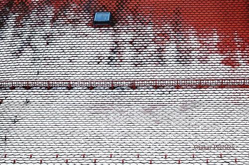 Na střeše  VII