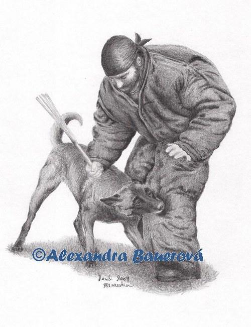 Belgický ovčák Malinois (mondioring - výcvik)