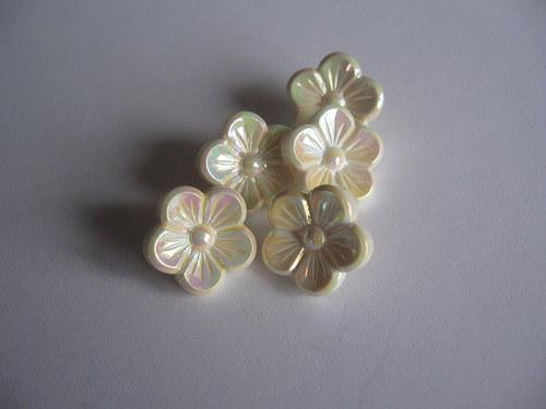 knoflík - Krémová kytička