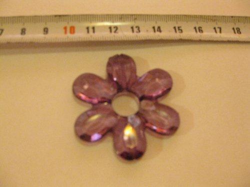 Květina fialová
