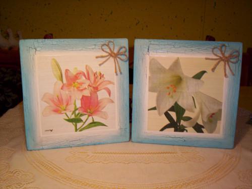 Dvojice obrázků - Lilie