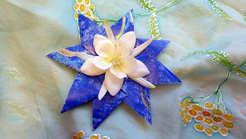 Modrá hvězda s bílým květem