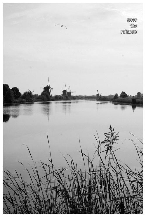 Kinderdijk II – autorská fotografie, černobílá