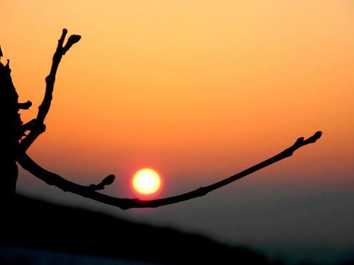 Podvečerní ticho na konci zimy ... pohled na přání