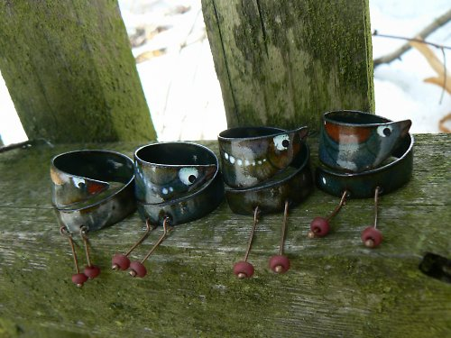 prsteny ptáčci