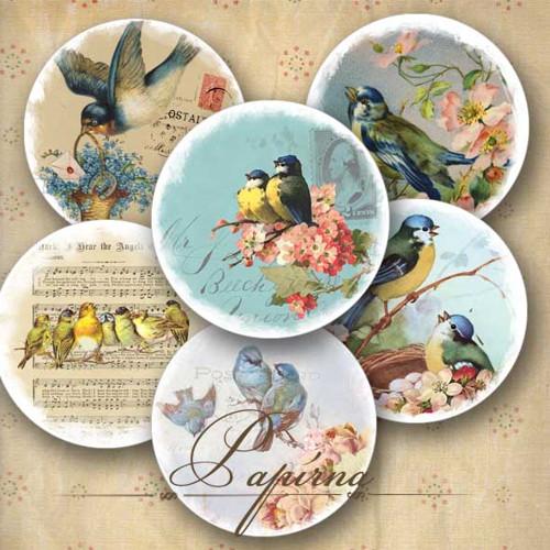 Samolepky ptačí