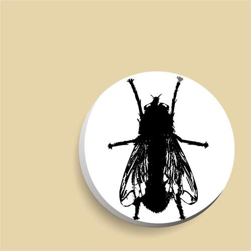 zrcátko - moucha