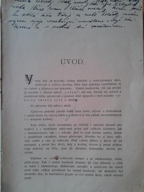 Kuchařská kniha r. 1904