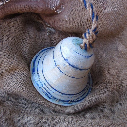 Zvon zahradní velký, Modrobílá varianta