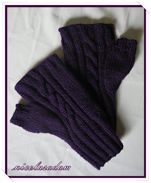 Bezprsťáky krátké fialové