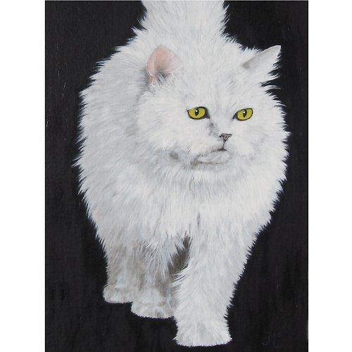 Kočka II.