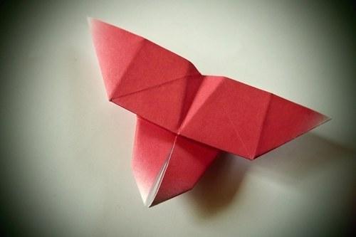 Origami motýlek - dočervena