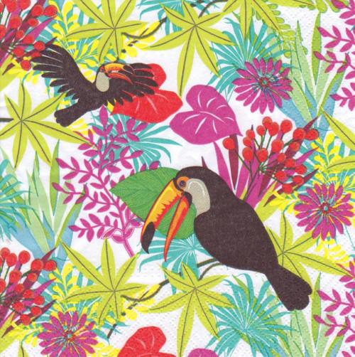 Ubrousek - papoušci