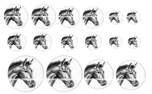 Návrh na pryskyřici - Zvířata č.1