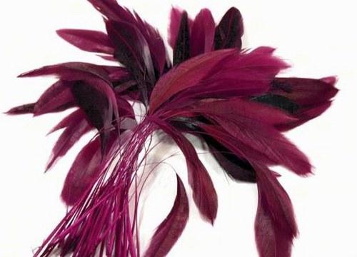 Bordó-purpurové kohoutí peří 10ks