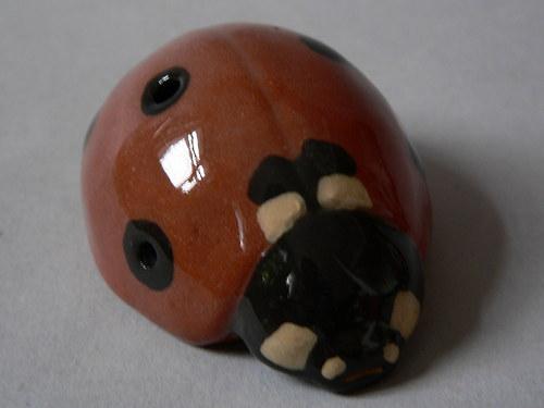 Píšťalka - beruška