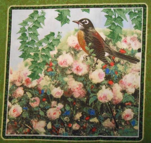 Ptáčci - green