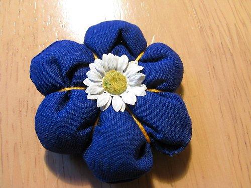 modrá kytička se sedmikráskou