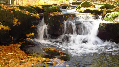 Vodopádek na podzim (protáhlý formát na šířku)