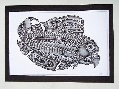 Ryboun  dravoun