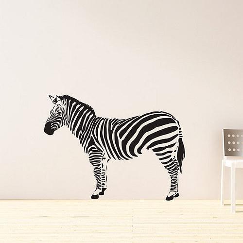 Zebra - MALÁ