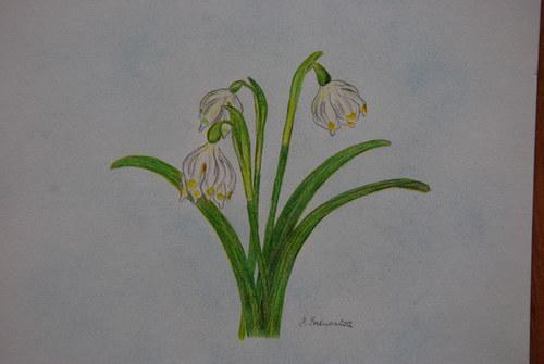 bledule...jaro je tady :o)