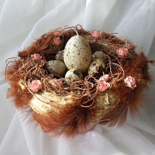 Hnízdo starorůžové