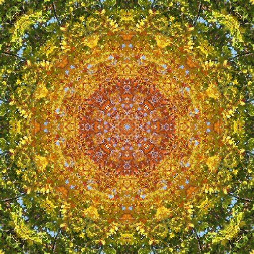 Mandala podzimního listí