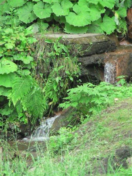 Zurčení přírody